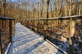 Forest path in winter snow covered fwood a scene Royalty Free Stock Photo