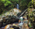Forest photography mountain river creeks waterfalls beautiful landscape Stock Photography