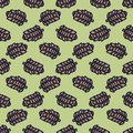 Forest pine cone cartoon seamless vector pattern. Hand drawn woods plant tile