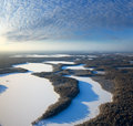 Forest of plain and lakes in winter Royalty Free Stock Images