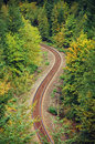 Forest railroad railway running through autumn Royalty Free Stock Photography