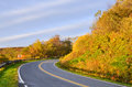 Forest road in autumn long asphalt to usa Stock Photo
