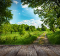 Forest road and blue sky country in wood pier Royalty Free Stock Image