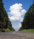 Forest road and clouds Royalty Free Stock Photo