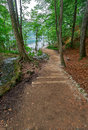 Forest Road In the Forest Plitvice Croatia. Royalty Free Stock Photo