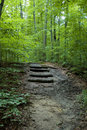 Forest Stairs Royalty Free Stock Photo