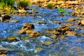 Forest stream running over rocks,river water view Royalty Free Stock Photo
