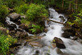 Forest stream running over rocks a small waterfall sunny day summer Stock Photos