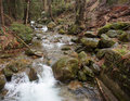 Forest stream with small water fall Stock Photo