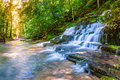 Forest stream and waterfall the shaker fulling mill at pleasant hill kentucky Stock Image