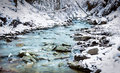 Forest stream in winter Royalty Free Stock Photo