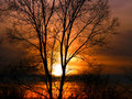 Forest Sunset Landscape Illinois Royalty Free Stock Photo