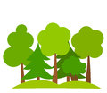 Forest various trees in vector illustration Stock Photos