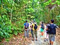 Forest walk in pulau ubin group of visitors studying tropical rainforests island singapore Stock Image