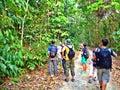 Forest walk in Pulau Ubin
