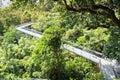 Forest walk of telok blangah hill park rainforest singapore Royalty Free Stock Image