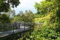 Forest walk of telok blangah hill park rainforest singapore Stock Image