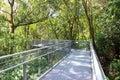 Forest walk of telok blangah hill park rainforest singapore Royalty Free Stock Photography