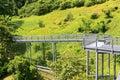 Forest walk of telok blangah hill park rainforest singapore Royalty Free Stock Photo