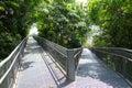 Forest walk of telok blangah hill park rainforest and skyscrapers singapore Stock Photos