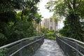 Forest walk van van het de heuvelpark van telok blangah het regenwoud en de wolkenkrabbers Royalty-vrije Stock Afbeeldingen