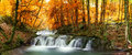 Forest waterfall autumn creek woods with yellow trees foliage and rocks in mountain Stock Photos