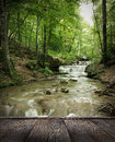 Forest waterfall autumn creek woods with yellow trees foliage and rocks in mountain Stock Photography