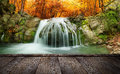 Forest waterfall autumn creek woods with yellow trees foliage and rocks in mountain Royalty Free Stock Images