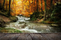 Forest waterfall autumn creek woods with yellow trees foliage and rocks in mountain and wood pier Stock Photo