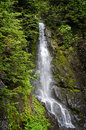 Forest waterfall a beautiful seen on the heliotrope ridge trail in the mt baker national in western washington state usa Stock Photo