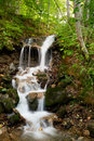 Forest waterfall cascading  Stock Images