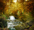Forest waterfall and rocks covered with moss Royalty Free Stock Photography