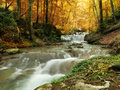 Forest waterfall and rocks covered with moss Royalty Free Stock Image