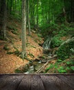Forest waterfall and rocks covered with moss and wood pier Royalty Free Stock Photos