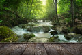 Forest waterfall and rocks covered with moss and wood pier Royalty Free Stock Photo