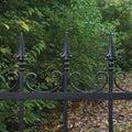 Forged black decorative wrought iron fence closeup autumnal trees background fallen leaves horizontal large dark autumn park scene Royalty Free Stock Photo