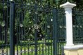 Forged gate with a beautiful ornament in kharkоv Stock Image