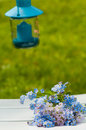 Forget me not and cuckoo flowers Royalty Free Stock Images