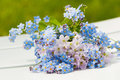 Forget me not and cuckoo flowers Royalty Free Stock Photo