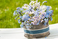 Forget me not and cuckoo flowers in a flower pot Stock Photography
