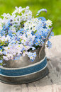 Forget me not and cuckoo flowers in a flower pot Royalty Free Stock Images