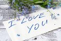 Forget-me-not flower on anв love note Royalty Free Stock Photo
