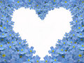 Forget me not heart Royalty Free Stock Photography