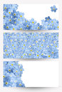 Forgetmenot banners Royalty Free Stock Photo