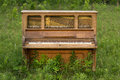 Abandoned Piano Forgotten in a Green Field Royalty Free Stock Photo