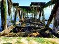Forgotten at sea in Bellingham wa