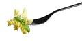 Fork pasta fusilli pesto sauce, basil parmesan pine nuts isolated on white Royalty Free Stock Photo