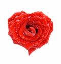 Form heart red rose Στοκ φωτογραφία με δικαίωμα ελεύθερης χρήσης