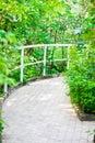 Formal Garden Courtyard Royalty Free Stock Photo
