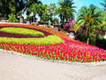 A formal garden Royalty Free Stock Photo